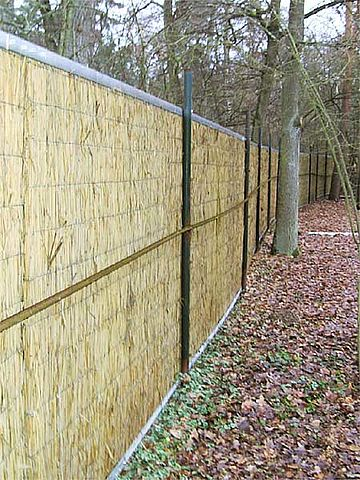 Fence in a park made of reed panels.