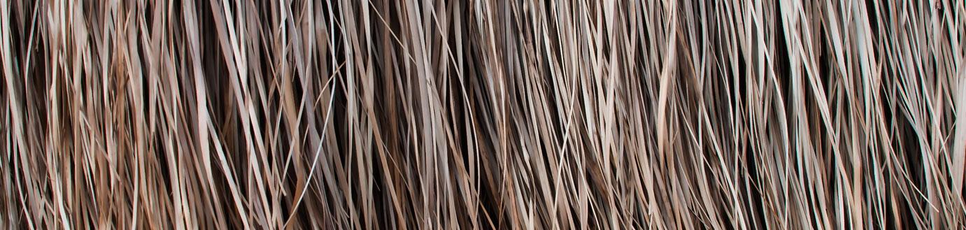 hiss reet gro handel f r dachreet gaubenfenster naturbaustoffe und gartenprodukte aus schilf. Black Bedroom Furniture Sets. Home Design Ideas