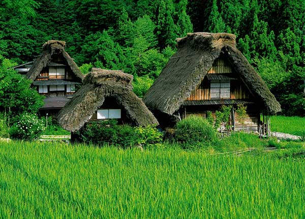 Pictures Photos Thatched Roofs Germany