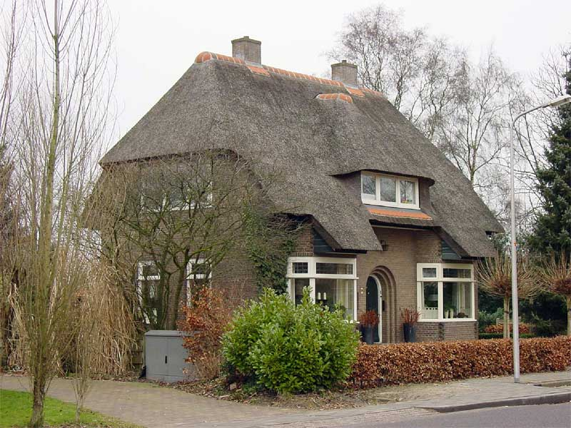 Thatched Roof Design